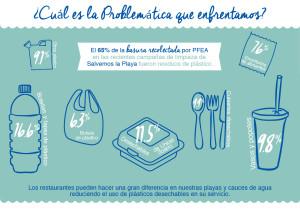 RAM_problematica-01
